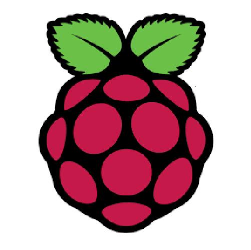 Raspberry Pi_mid