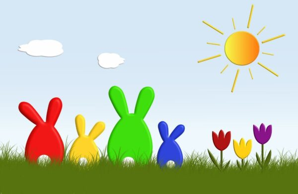 Rabbits in the sun